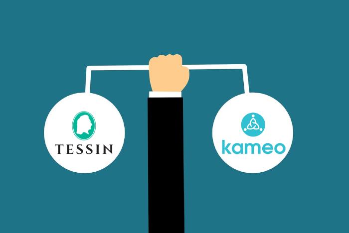Tessin vs Kameo