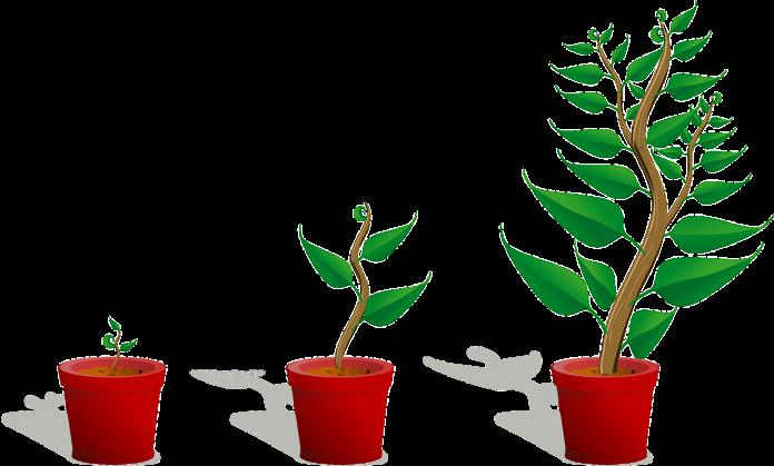 Förvärvad tillväxt