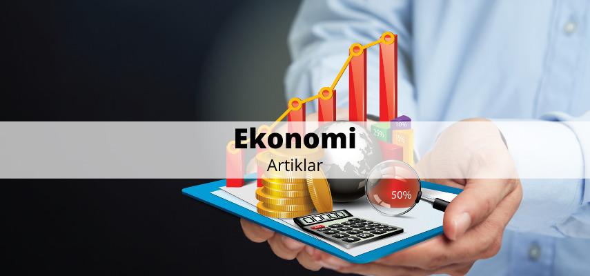 Ekonomi - artiklar